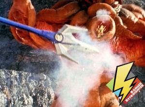 Power Lance attacking Octophantom