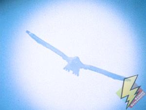 Falconzord descends